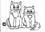 disegni per bambini da colorare..gatto-il gatto..disegno gattino da colorare..in fattoria.agriturismo Varese, prodotti tipici varesini,disegno micetto da colorare...disegno gatto da colorare per bambini in fattoria...didattica..