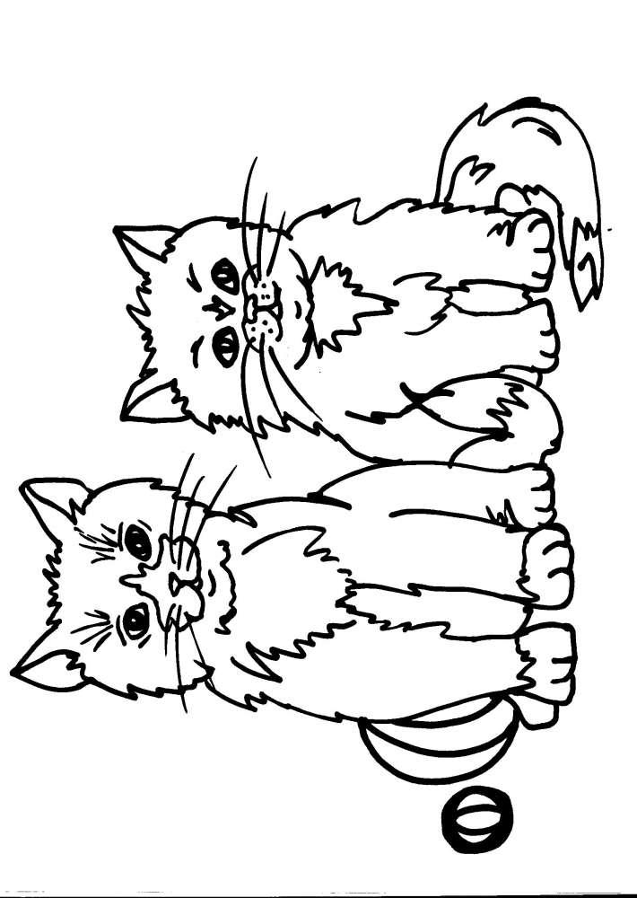 Molto disegni per bambini da colorare..gatto-il gatto..disegno gattino  QV73