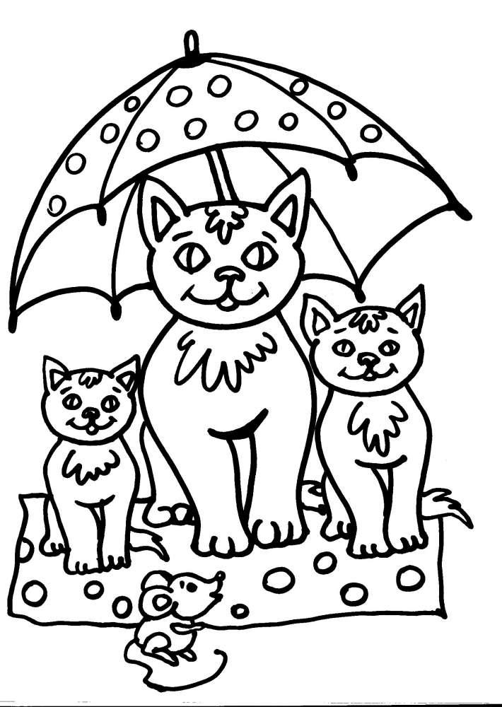 Disegni Per Bambini Da Colorare Gatto I Gatti Disegno
