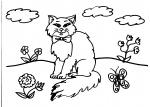 disegno gattino da colorare..gatto,il gatto..disegno da colorare gatto..in fattoria..,agriturismi in Varese, prodotti tipici varesini,disegno gattino da colorare...disegno micetto da colorare per bambini gratis...disegni gatti da colorare