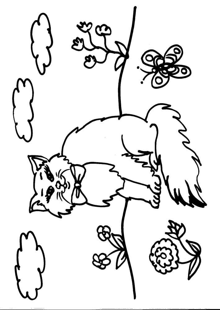 Disegno gattino da colorare gatto il gatto disegno da for Gatto da colorare per bambini