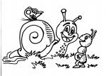 disegni da colorare per bambinilumaca lumachin