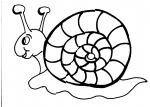 disegni da colorare bambini..lumaca..chiocciola..disegno lumaca da colorare..agriturismi di Varese, prodotti tipici varese..disegno lumachina da colorare ,gelato in agrigelateria in fattoria,animali fattoria didattica..