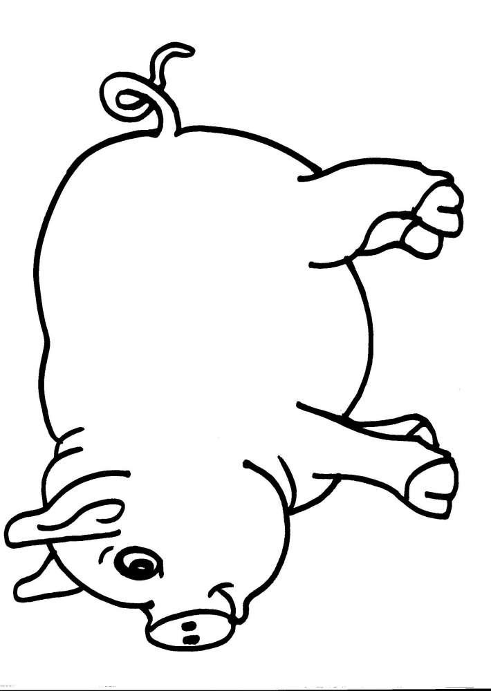 Disegno porcellino della fattoria da colorare maiale for Maialino disegno per bambini