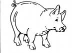 disegni animali della fattoria da colorare..maiale.. maiale..disegno maiale da colorare..disegno porcello da colorare..disegno maiale parente del cinghiale da colorare