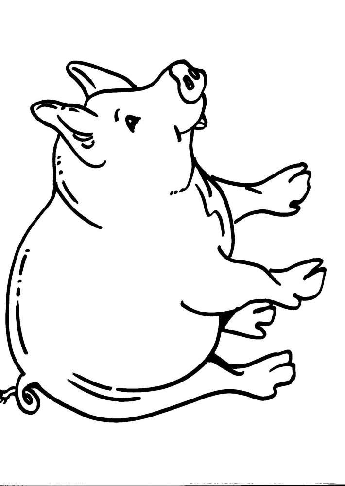 Disegno maiale da colorare disegno porcello da colorare for Maialino disegno per bambini