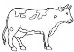 disegni animali della fattoria da colorare..mucca.. mucche vacche..disegno mucca da colorare...disegno vacca da colorare..disegno toro da colorare..torello