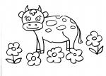 disegni animali della fattoria da colorare mucca.. mucca disegno frisona da colorare..disegno mucche da colorare..disegno manza da colorare..vitello da colorare..vitellino