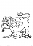 disegno vitello della fattoria da colorare mucca,disegno vitello da colorare..in fattoria ..disegno toro da colorare..disegno mucca da colorare..mandria di mucche da colorare