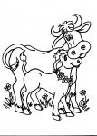 disegni animali della fattoria da colorare mucca,il toro è il maschio dei bovini,disegno toro da colorare..disegno bovino da colorare..disegno mucca nel prato da colorare..manzetta da colorare