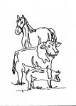 disegni animali in fattoria da colorare:cavallo,mucca,maiale..disegno fattoria da colorare..disegno contadino con trattore da colorare..disegno campagna aratro trattore da colorare..disegno allevamento da colorare..stalla da colorare