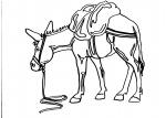 disegni animali in fattoria da colorare:asino,l'asino..disegno asino da colorare..disegno mulo da colorare..disegno bardotto da colorare..disegno ciucchino da colorare..disegno asinello da colorare..disegno somaro da colorare..