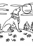 disegni animali per bambini da colorare:lupo nella foresta ..disegno lupo da colorare..disegno lupetto da colorare..disegno lupacchiotto da colorare..disegno bambi da colorare..disegno alce da colorare