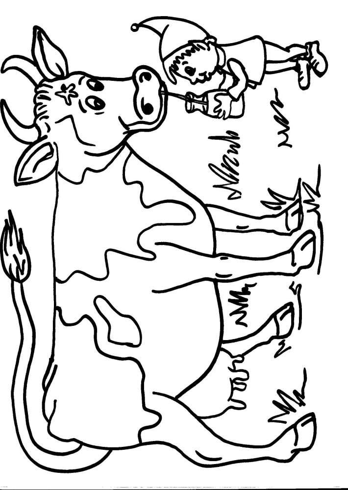 da colorare mucca la mucca disegno mucca da colorare disegno vacca da