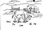 disegni animali della fattoria per bambini da colorare:mucca..mucche..disegno vitellino da colorare..disegno manza da colorare..agriturismi in provincia di varese,disegno mucca da latte da colorare..bufala da latte da colorare