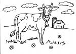 disegni animali della fattoria per bambini da colorare:mucca..mucca..disegno manzetta da colorare..agriturismi in provincia di varese,disegno bufala a oleggio da colorare..disegno annutolo da colorare..bufalino da colorare