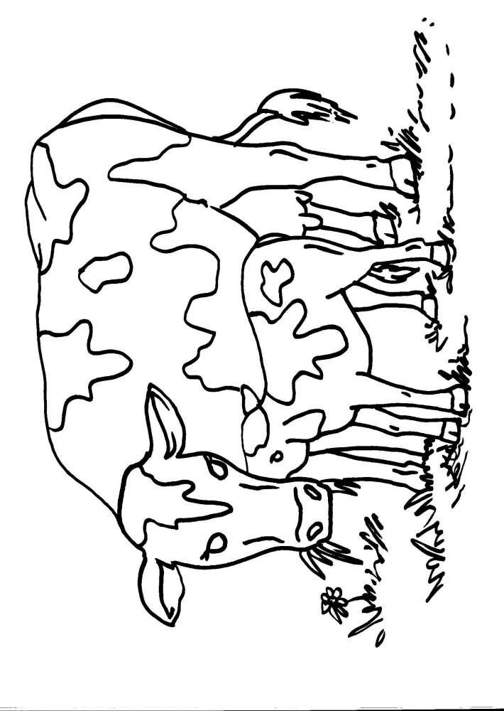 Disegni da colorare per bambini animali fattoria l 39 idea for Piani di progettazione della fattoria