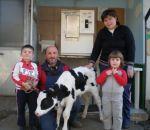latte fresco nella fattoria a oggiona santo stefano..latte a cavaria..latte a cassano magnago...uova fresche di gallina ruspante a cassano magnago in fattoria ottolenghi
