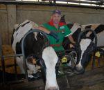 verdure fresche a Oggiona S. Stefano,latte fresco appena munto, distributore latte crudo a oggiona s.stefano,disegni animali fattoria,fattorie didattiche,scuole in fattoria,didattica in fattoria per bambini