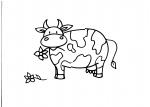 animali della fattoria,fattoria animali da colorare,fattorie didattiche..la mucca è un bovino.il cavallo è un equino.il maiale è un suino.l'asino è un equino.didattica in fattoria.scuola in fattoria.disegni da colorare.bere latte fà bene